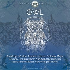 Find Your Spirit Animal, Animal Spirit Guides, Animal Meanings, Symbols And Meanings, Earth Symbols, Nature Symbols, Spiritual Animal, Spiritual Symbols, Yoga Symbole