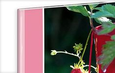 Individualisierbarer Hardcover-Einband Costa Rica, Plants, Photos, Pictures, Plant, Planets