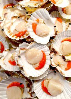 Rialto Fish Market Bounty