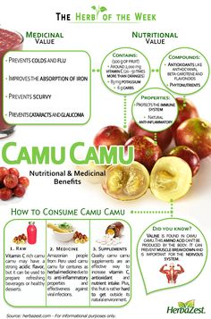 Infographic: Camu Camu This fruit is the best source of vitamin C you could find.