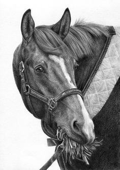 Rysunek konia z trawą w pysku.