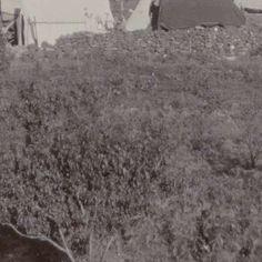 Tentenkamp van Boeren bij Mafeking, Jan van Hoepen, 1899 - 1900 - Search - Rijksmuseum Armed Conflict, Britain, War, Outdoor, Outdoors, Outdoor Games, The Great Outdoors