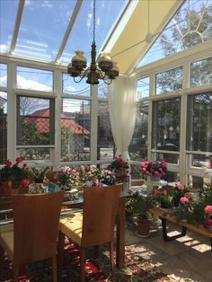 #コンサバトリー#ガーデンルーム#サンルーム Conservatory, Plants, Sun Room, Planters, Greenhouses, Plant, Planting