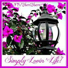 """""""Simply loving life!"""" quote via www.Facebook.com/SheriShares"""