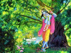 http://harekrishnawallpapers.com/krishna-artist-wallpaper-012/