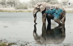 What will it take before we respect the planet?  #WWF