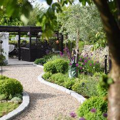 Purple Clematis, Clematis Vine, Garden Edging, Garden Paths, Back Gardens, Outdoor Gardens, Water Gardens, Sweet Autumn Clematis, Low Maintenance Garden
