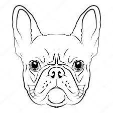 Image result for franse bulldog tekening
