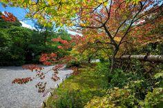 京都 光悦寺。