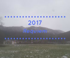 2017 - Terugblik