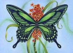 Emerald Wings by Denise Freeman ~ butterfly ~ nature up close