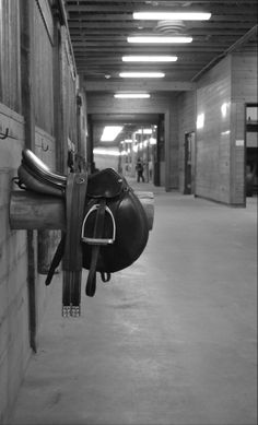 hunt saddle, hunter jumper, barn photography, horse photography