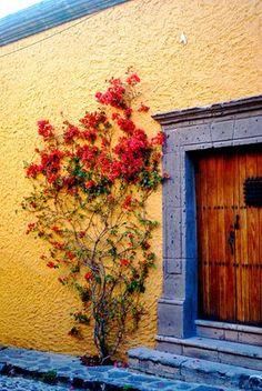 San Miguel de Allende Más