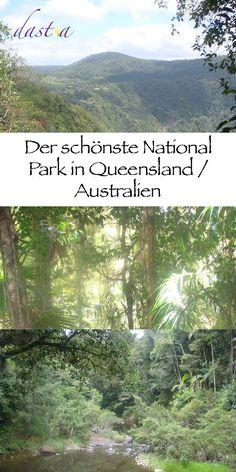Eungella National Park, ein Highlight der australischen Ostküste. Ein Naturwunder und ein absolute Geheimtipp, um im National Park zu campen!