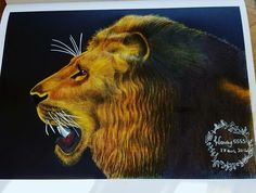 Lion by Wendy Perry