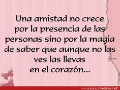 frases d de amistad - Google Search