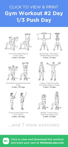 ee782497cfb4d Gym Workout  2 Day 1 3 Push Day · WorkoutLabs Fit