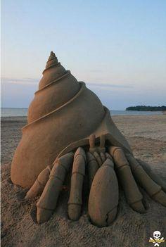 Hermit Crab Sand Sculpture by Carl Jara