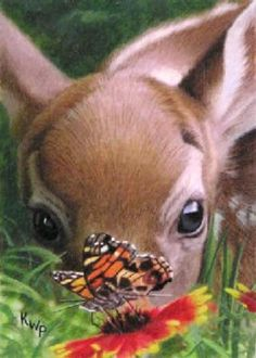 Bambi and butterfly <3<3