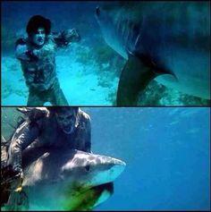 Zombie vs Shark from Zombie (1979)
