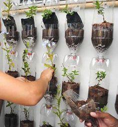 56 Trendy Ideas For Pet Bottle Diy Vertical Gardens Jardim Vertical Diy, Vertical Garden Diy, Vertical Gardens, Vertical Farming, Hydroponic Gardening, Hydroponics, Container Gardening, Organic Gardening, Gardening Vegetables