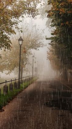 I love rain~ Walking In The Rain, Singing In The Rain, Rain Gif, Beautiful Places, Beautiful Pictures, I Love Rain, Rain Photography, White Photography, Rainy Day Photography