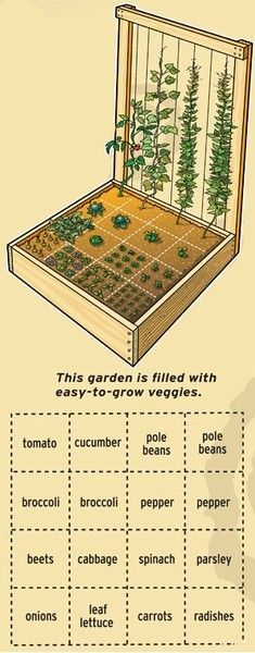 "A very nice compact vegetable garden design. Be sure you get non-hybrid, ""no-HMO"" seeds so you can save $$ by recovering the seeds for re-planting! Hybrid and HMO seeds will not give you seeds that reproduce.. they are a waste of $. Consider setting this garden up with SOUTHERN EXPOSURE and in full daylight from 10 am to 3-4 pm, if possible. Also, if you can, set it near a downspout so you can capture rain water in a barrel for irrigation."