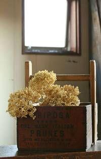 花々からドライフラワーへ♪ センニチコウのトピアリーアレンジ : 窪田千紘フォトスタイリングWebマガジン「Klastyling」暮らす+スタイリング Lettering, Flowers, Drawing Letters, Royal Icing Flowers, Flower, Florals, Floral, Brush Lettering, Blossoms