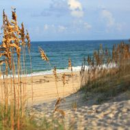 We are already looking forward to summer on the Outer Banks.