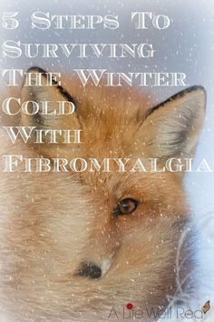 The winter cold is brutual on my Fibromyalgia & CFS/ME flare-ups. This article contained 5 REALLY GREAT tips for helping me manage my chronic pain when the weather turns. ♥♥♥ it! *Pin Now For Later