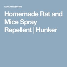 Homemade Rat and Mice Spray Repellent | Hunker