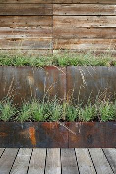 This Modern House Uses Stepped Weathering Steel Planters To Mediate Between The Boardwalk Level And The Ground Level, Which Is Elevated Above The Floodplain. Landscape Design, Garden Design, Ipe Decking, Weathering Steel, Maryland, Modern Planters, Rustic Planters, Succulent Planters, Flower Planters