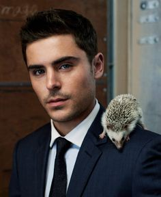 Zac Efron and a Hedgehog from Zac Efron and Animals  Full disclosure, we would give anything to be an adorable, little hedgehog anyway. But we'd be doubly excited to be an adorable, little hedgehog if we got to sit on Zac Efron's shoulder all day. (c/o BlackBook)