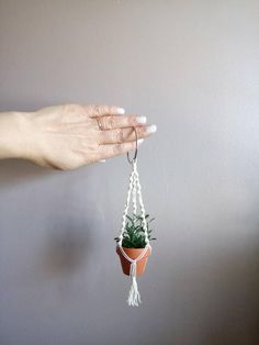 tiny plant hanger for rear view mirror