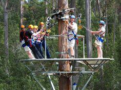 Hollybank Treetops Adventure's Zip Line Canopy Tours, 15 mins NE of Launceston, Tasmania, #Australia