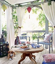 I like the curtains and the pretty blue chairs. It feels like a summery place to sit and relax. Love the dog.