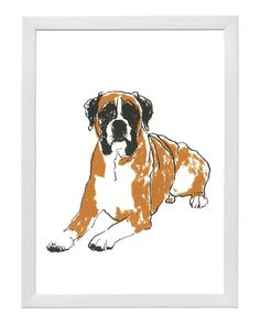 Image of Boxer from