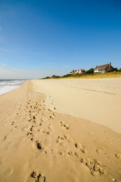 It's time to hit the beach! Fuel up with coffee from Sag Town Coffee, and then get an early start to snag a parking spot at one of the Hampton's gorgeous public beaches, like Main Beach in East Hampton—or, skip the hassle of driving and take advantage of