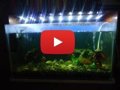 Haz tu lampara LED casera para tu Acuario, de manera facil y Sencilla