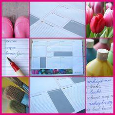 Dit vrolijke blok is de ideale planner voor op je bureau, zowel thuis als op school.