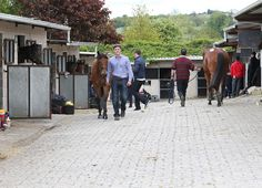 The picturesque Co. Kilkenny racecourse Gowran Park is again the scene where 238 horses galloped on Thursday in advance of Friday's Goresbridge Breeze Up Sale. The track was riding on the easy side of good …