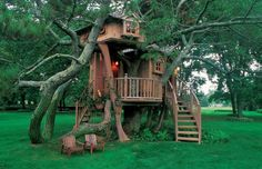 such a cool treehouse!