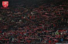A Minha Chama: 2016-2017 23ªJ: SL Benfica 3 Chaves 1