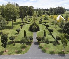 Living Architecture: 100-Seat Church Made of Real Trees