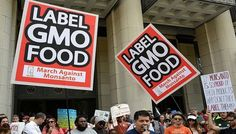GMO History | Vermont Makes History as First State to Require GMO Labeling