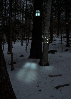 Woodhouses by Daniel Barreto