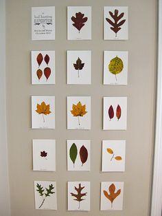 Ideas de manualidades para otoño 2014 Decoración de hojas