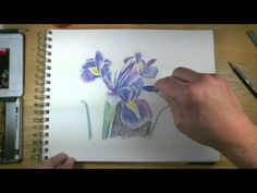 How to Draw with Watercolor Pencils - Live Lesson Excerpts - YouTube