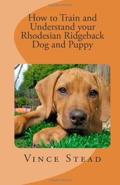 How to Train and Understand your Rhodesian Ridgeback Dog and Puppy by Vince Stead. $12.99. Publication: April 30, 2012. Publisher: CreateSpace (April 30, 2012)