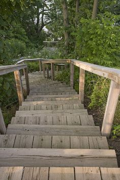 Beach Access -- really charming idea to do on a steeply sloped backyard area with denser vegetation (like our soon-to-be backyard). I wonder how these steps would weather PGH winters. Landscape Stairs, Landscape Design, Landscape Architecture, Outdoor Stair Railing, Cable Railing, Chicago Landscape, Landscaping On A Hill, Shade Landscaping, Landscaping Ideas